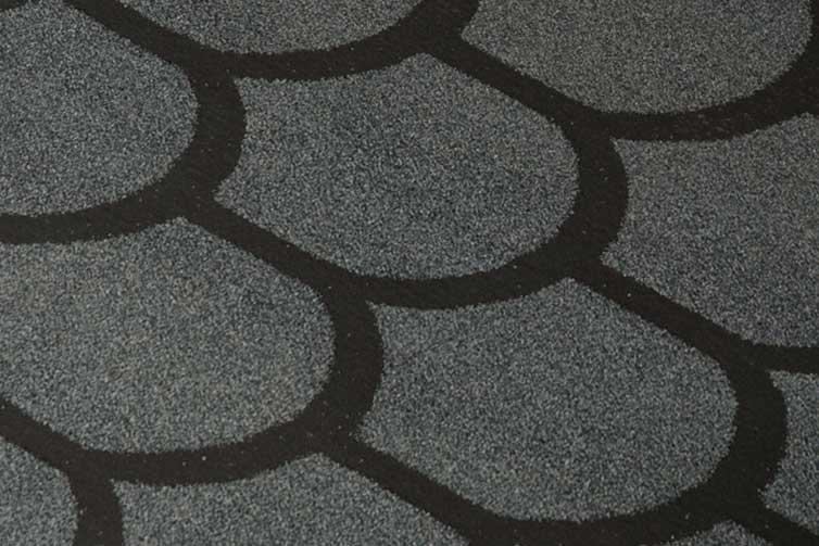 Бобровый хвост серый.jpg